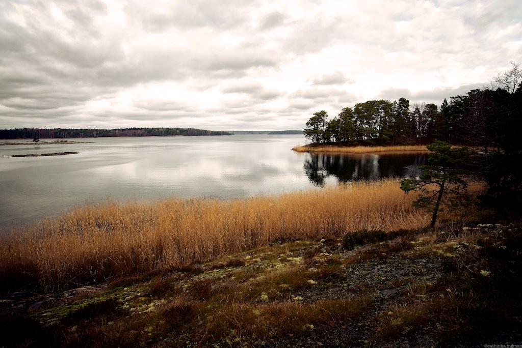 2014 Dalarö Gålö 79