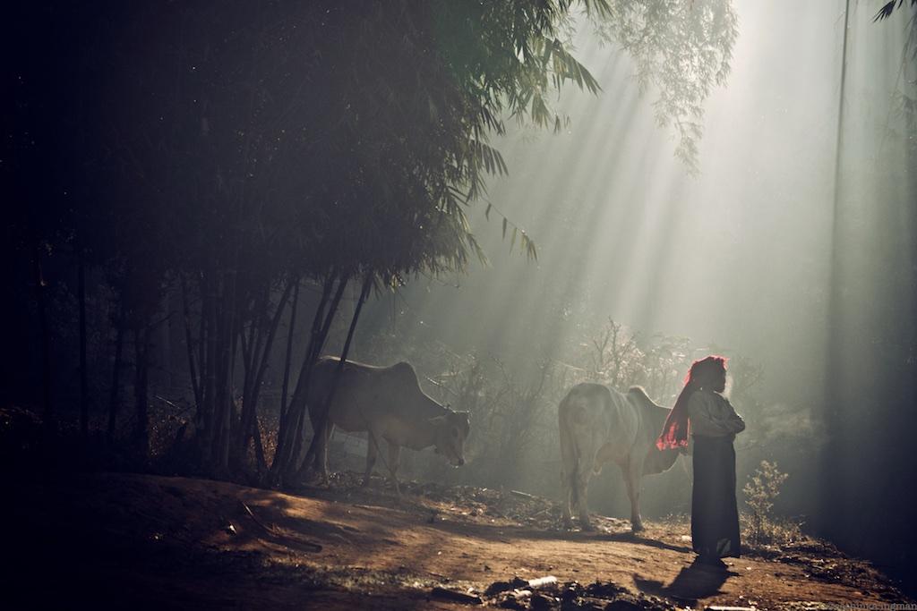 Vandra i Burma
