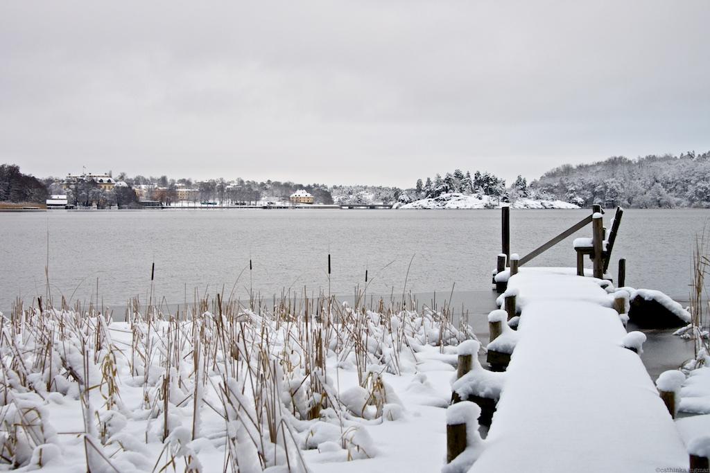 Drottningholm jan 23 44