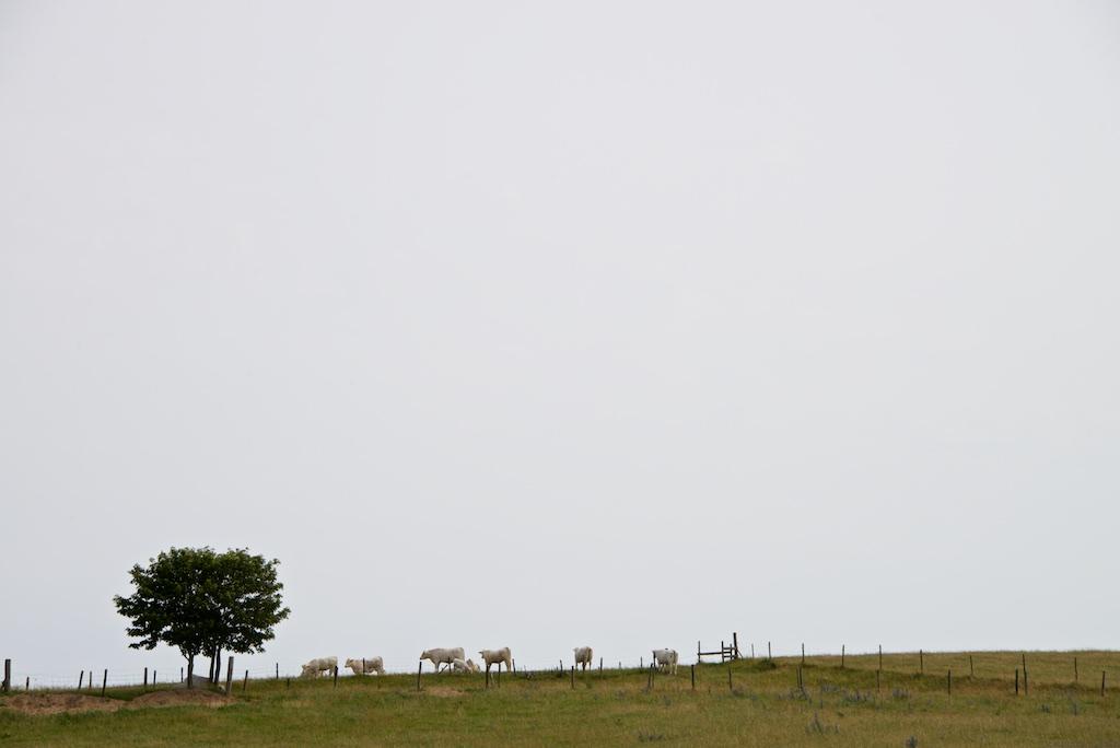 Österlen, Skåne