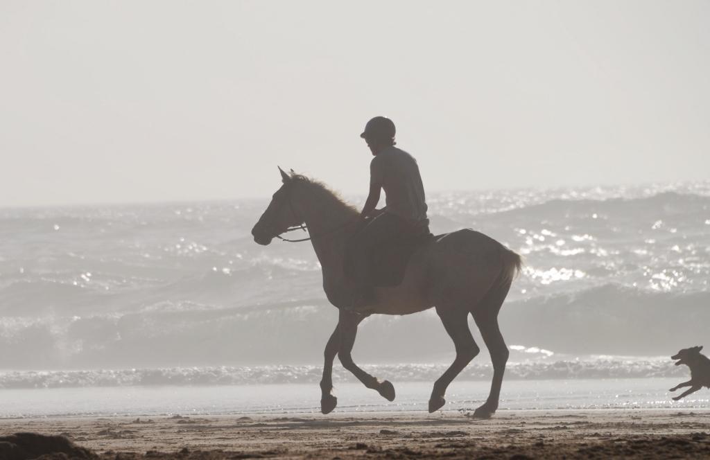 Praia do Cordoama