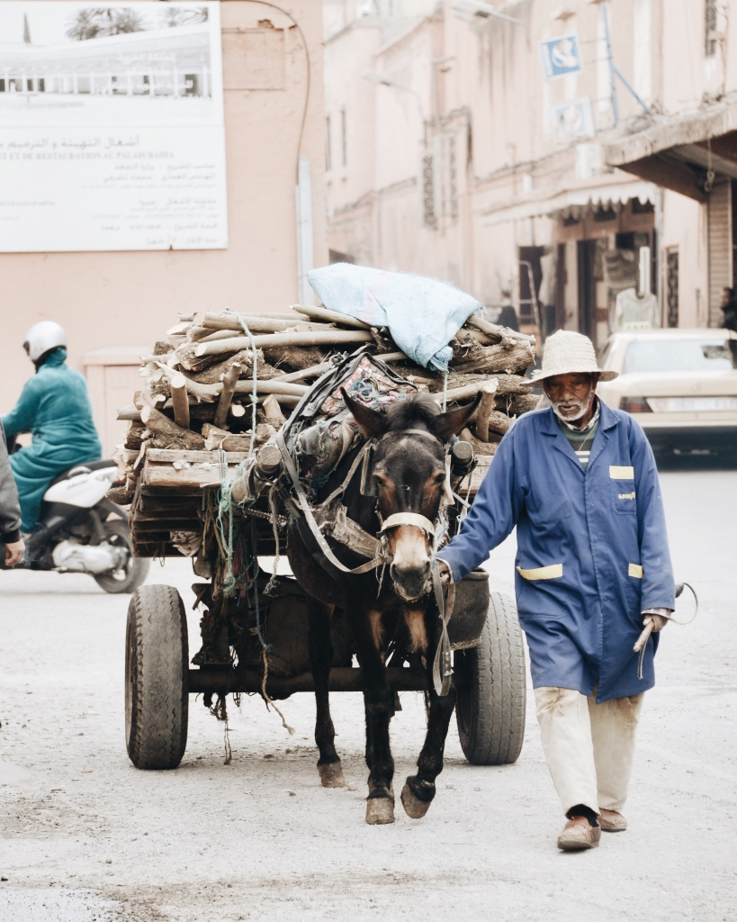 Man with donkey carriage in Marrakech