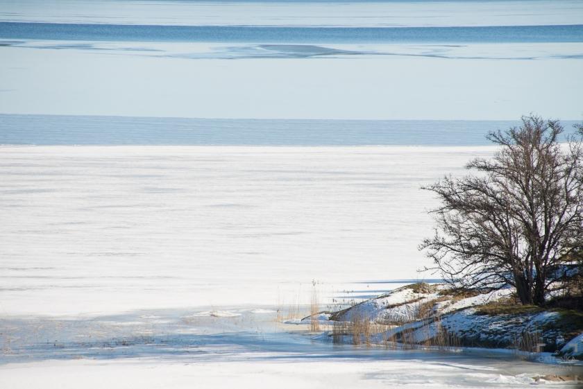 Nynäs Naturreservat, Vandringar i Stockholmstrakten