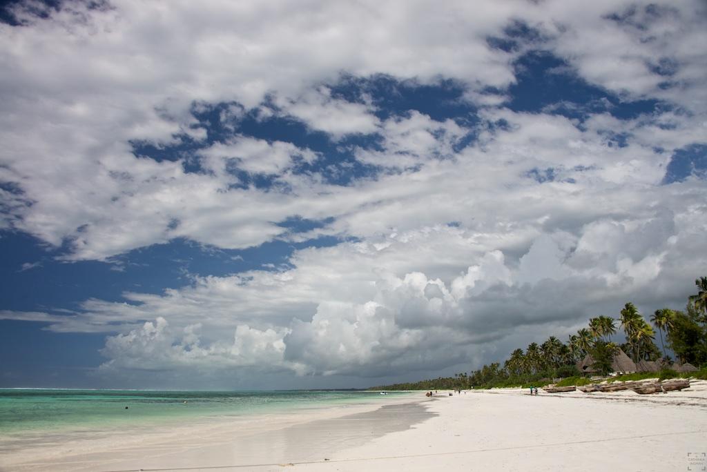 Zanzibar, Matemwe, paradisstrand, paradisstränder