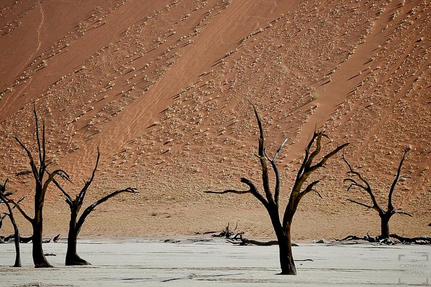 Namibia resa