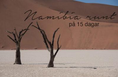 Namibia runt på 15 dagar