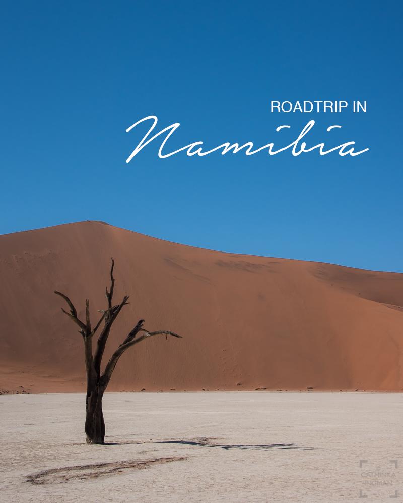 Namibia på egen hand