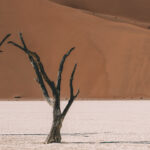 Resa till Namibia, reseblogg Namibia, Rundresa i Namibia