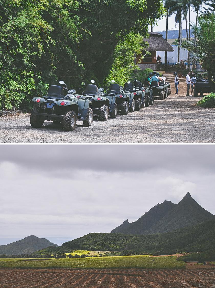 Vad finns det att göra på Mauritius