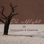 Sossusvlei-Deadvlei