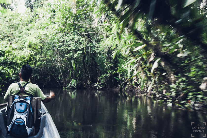 Paddla kanot i amazonas, sani lodge, ecuador, #allyouneedisecuador