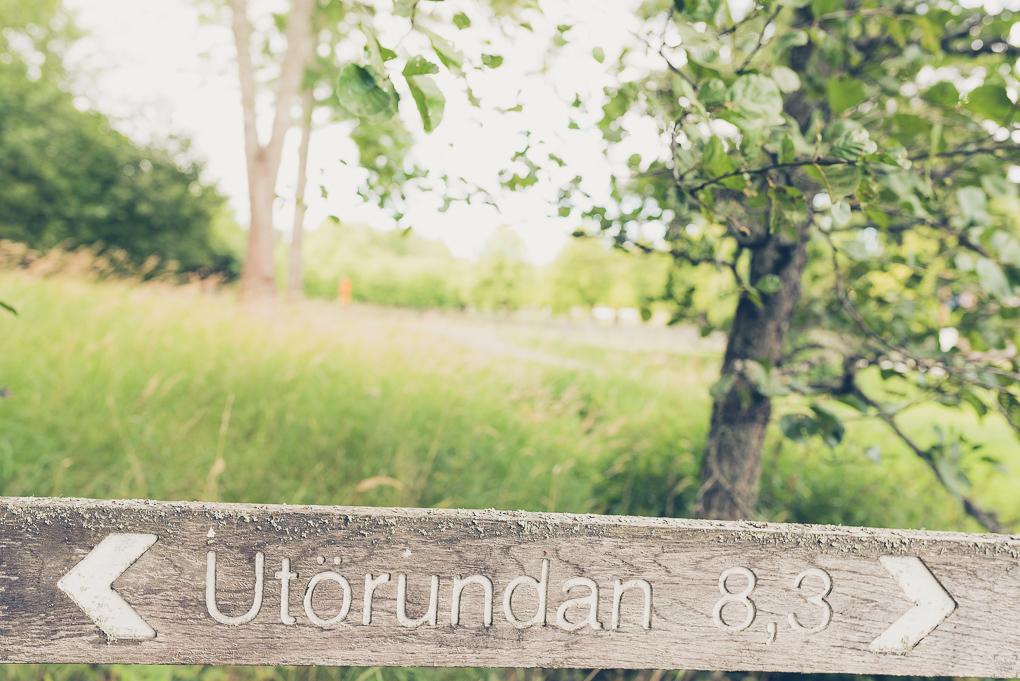 Ängsö Naturreservat, vandring, Västerås, vandringar i stockholmstrakten