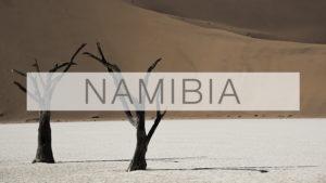 Reseblogg, Resa till Namibia