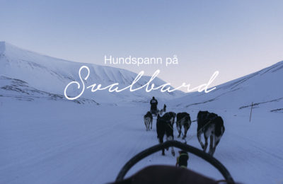 Hundspann på Svalbard, reseblogg Svalbard, www.cathinkaingman.se