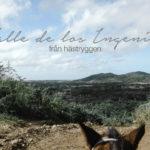 Rida på Kuba, Valle de los Ingenios, Reseblogg om att resa till Kuba, Grekland, Lissabon, Namibia