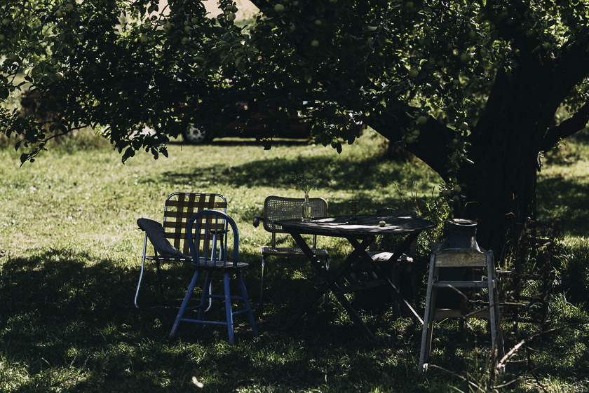 Reseblogg, Rosenhill Trädgård och Musteri, Fikaställen i Stockholm
