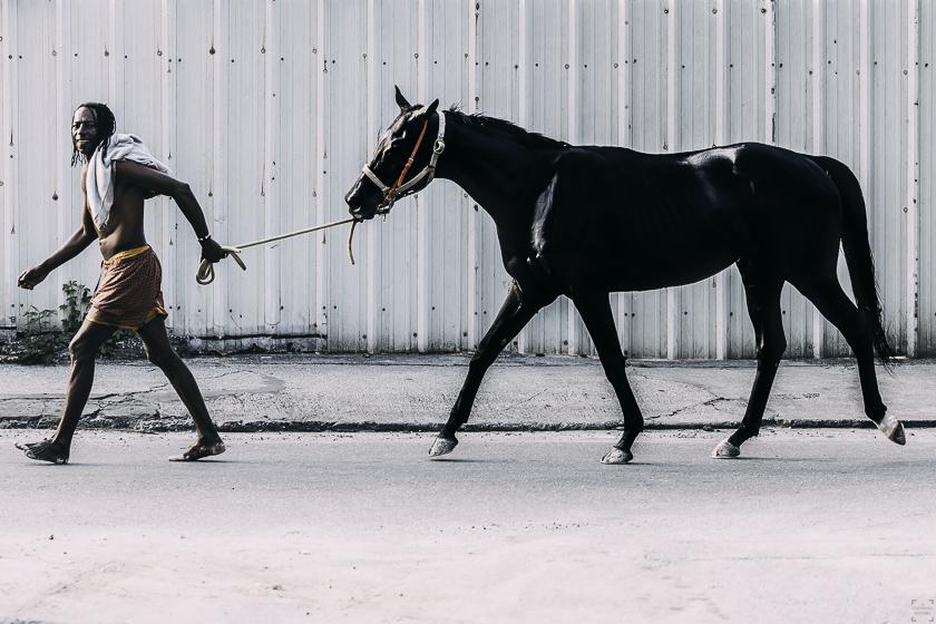 Simmande hästar på Barbados, Pebbles Beach