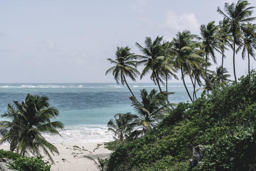 Barbados stränder, bästa strand barbados