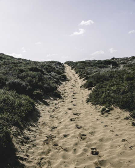 Vandring algarvekusten, carrapateira, trail of tides