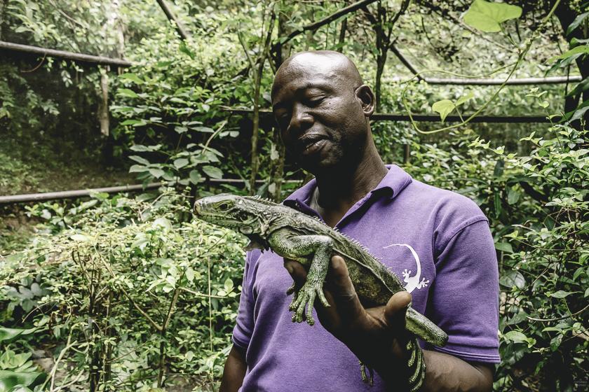 resa till tobago, tobago resa, corbin wildlife