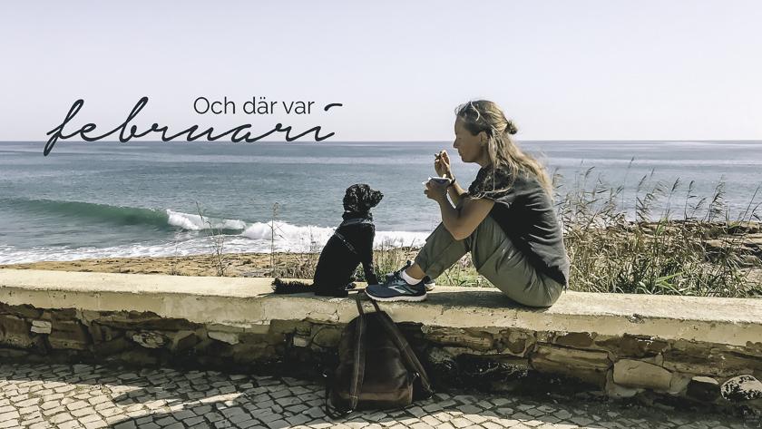 Reseblogg, livet som portugalsvensk