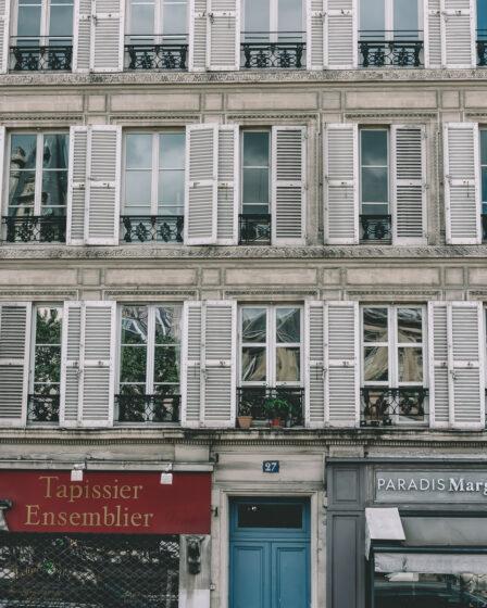 När Tintin the dvärgpudel besöker Paris