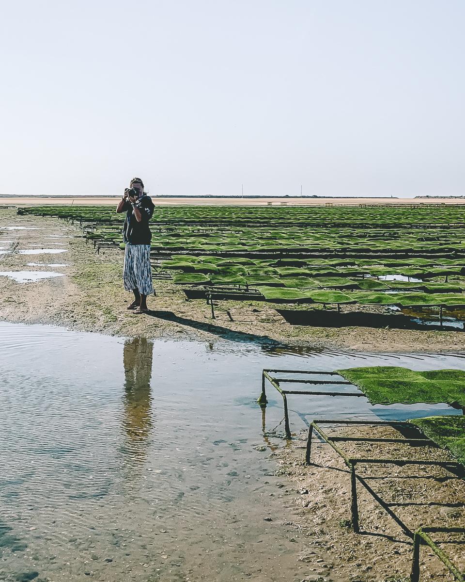 mat i lagos, utflykter kring lagos, se och göra i lagos
