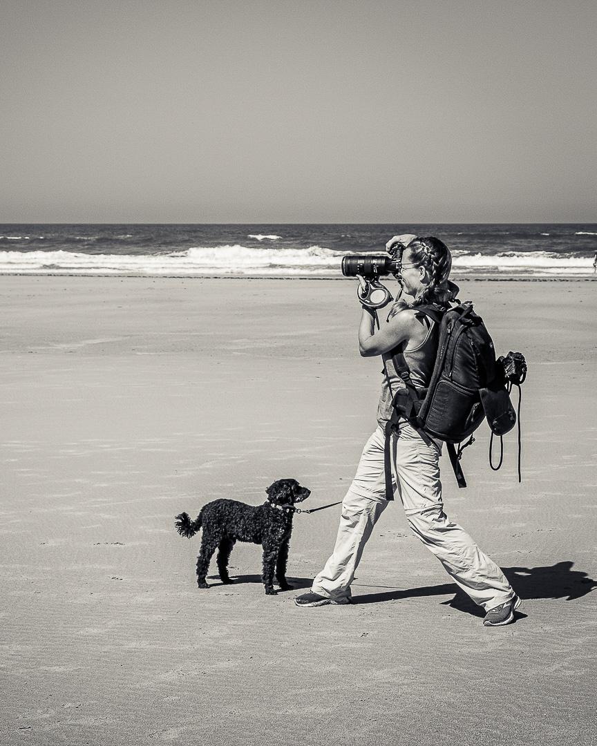 Fotoplatser på Atlantkusten, bild RalphTorgardh