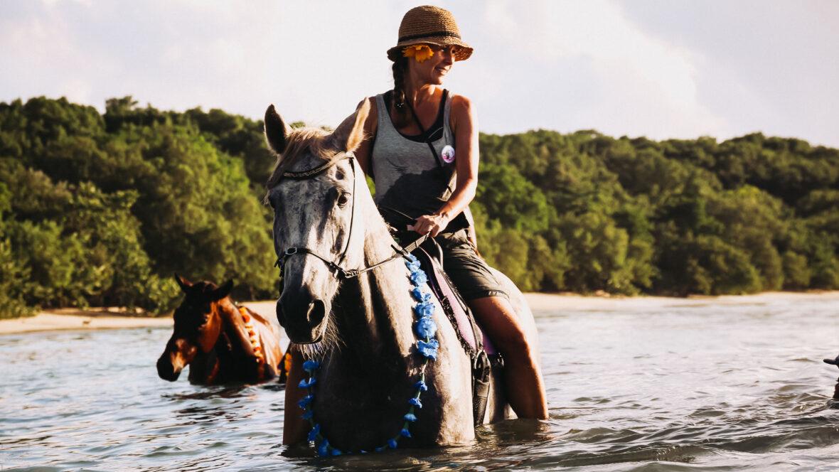 Tidtur på Tobago med Being with horses
