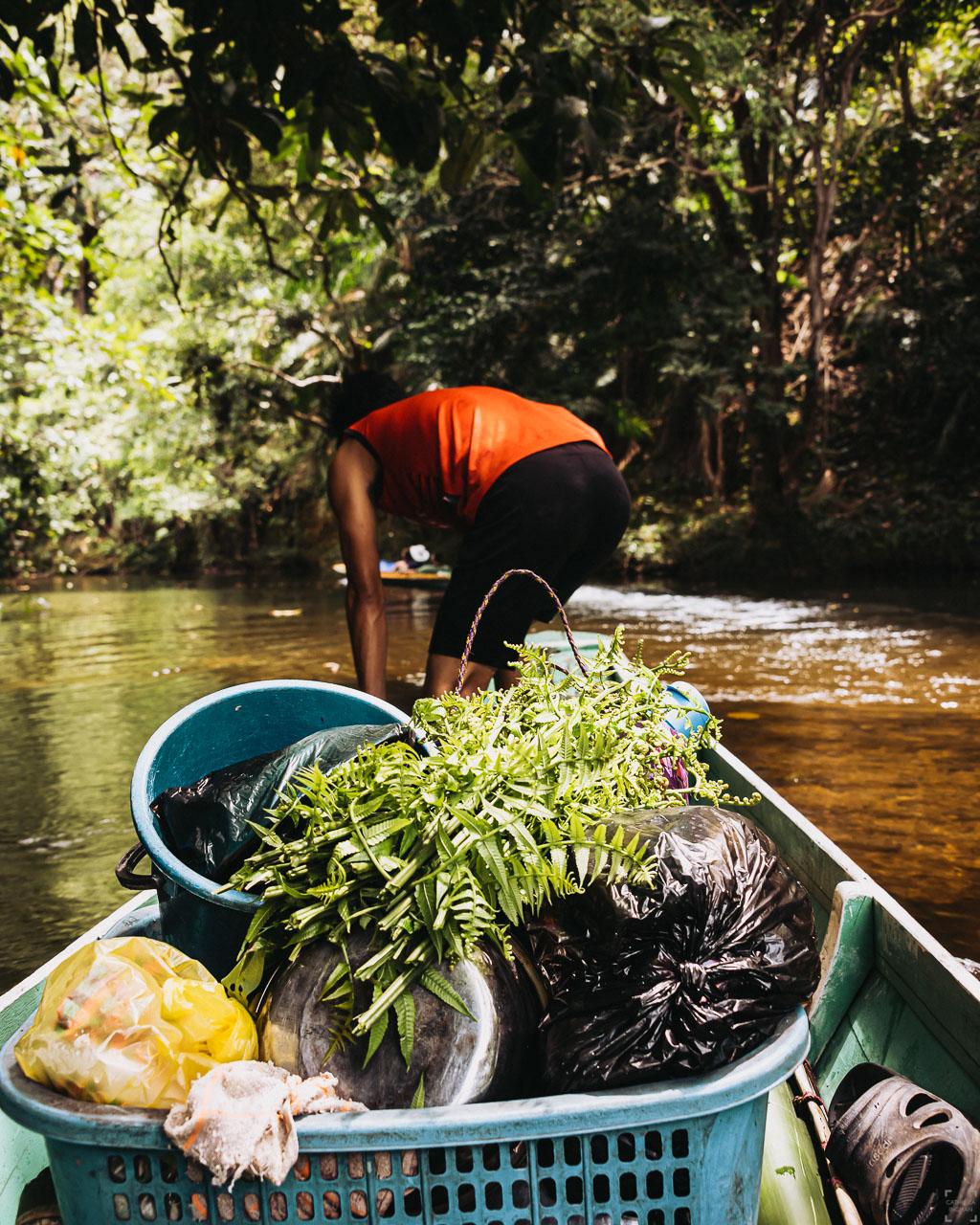Nanga Sumpa, djungeläventyr på Borneo