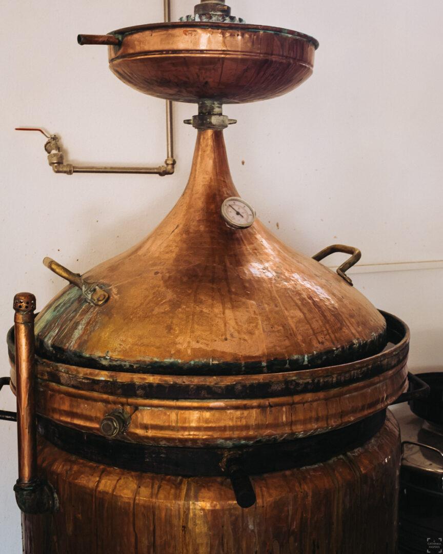 Destilaria Black Pig