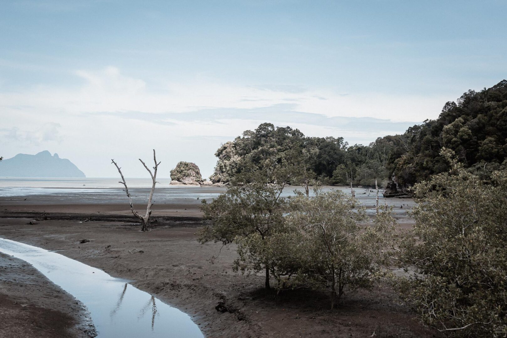 Kustlandskap Bako