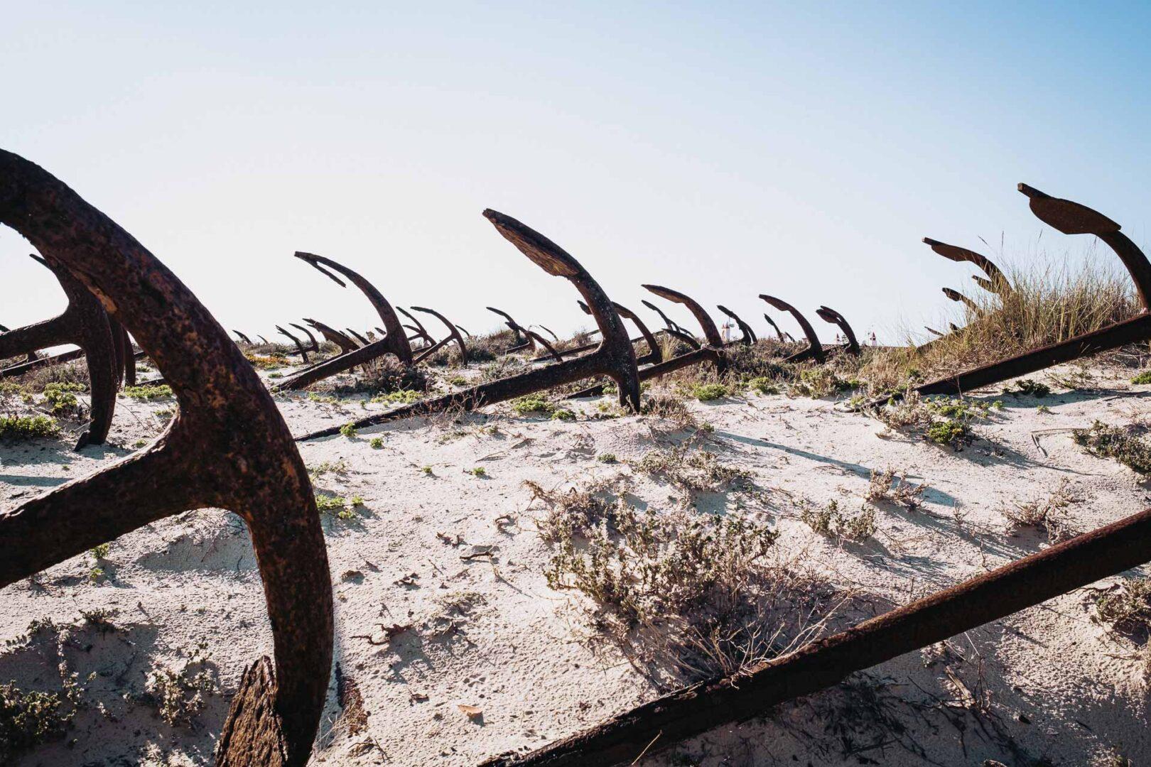 Världens finaste stränder - Praia do Barril