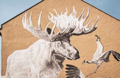 Street art i Linköping