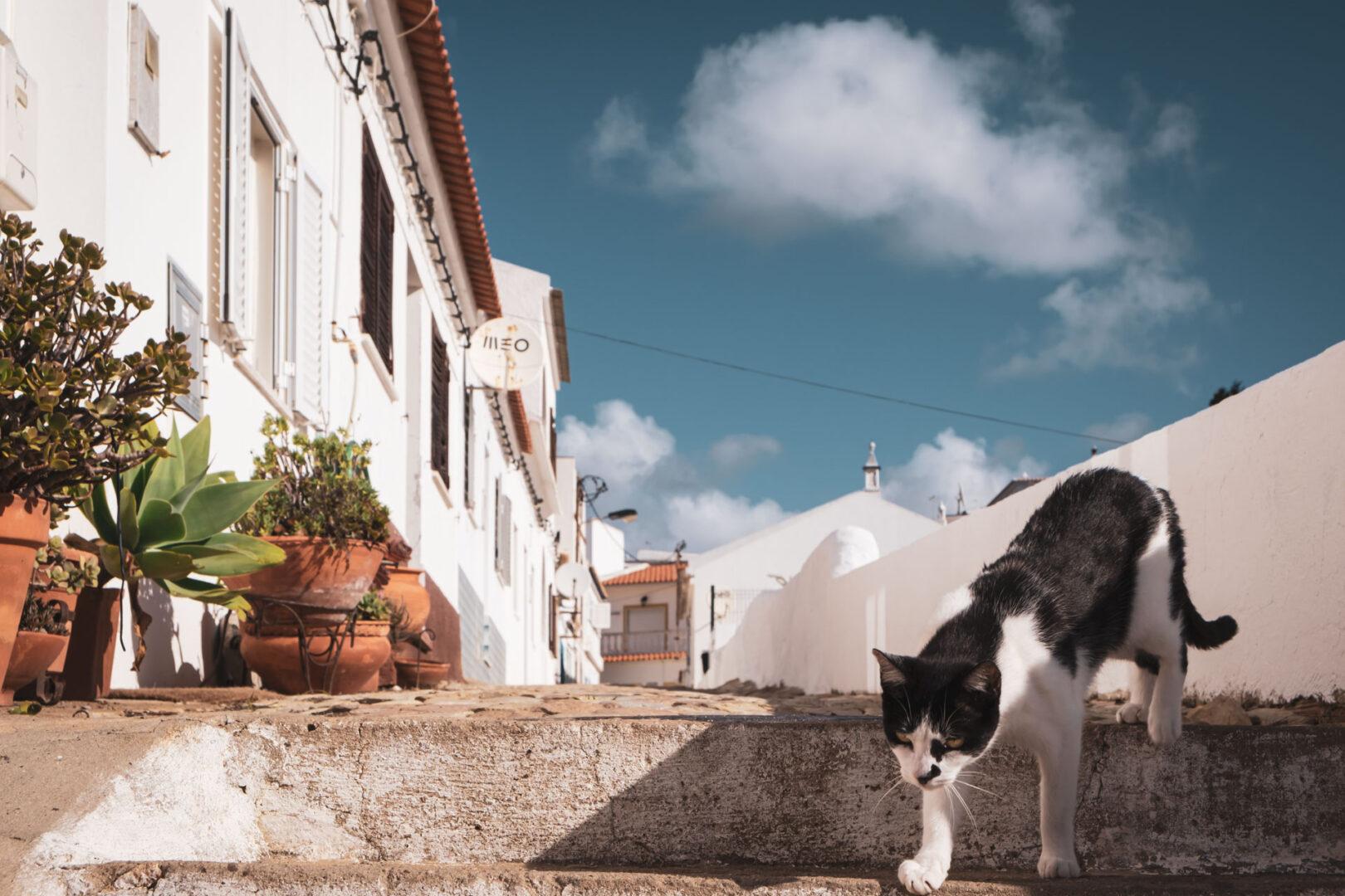 Salema, mysiga byar att besöka i Algarve